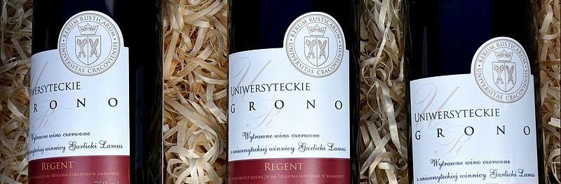 garlicki lamus winnica